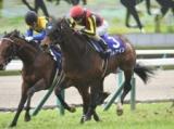【マイルCS】秋のマイル王決定戦、あの馬の巻き返しを期待/JRAレース展望