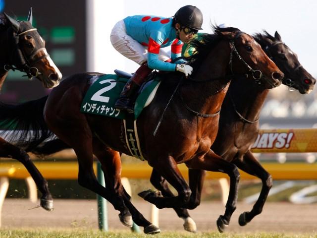 安田記念優勝馬インディチャンプは池添謙一騎手とのコンビに(撮影:下野雄規)