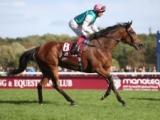 【海外競馬】欧州年度代表馬はエネイブル! ゴスデン厩舎から4頭受賞