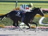 【地方競馬】エピカリスが右前浅屈腱炎で引退 UAEダービーでサンダースノーの2着