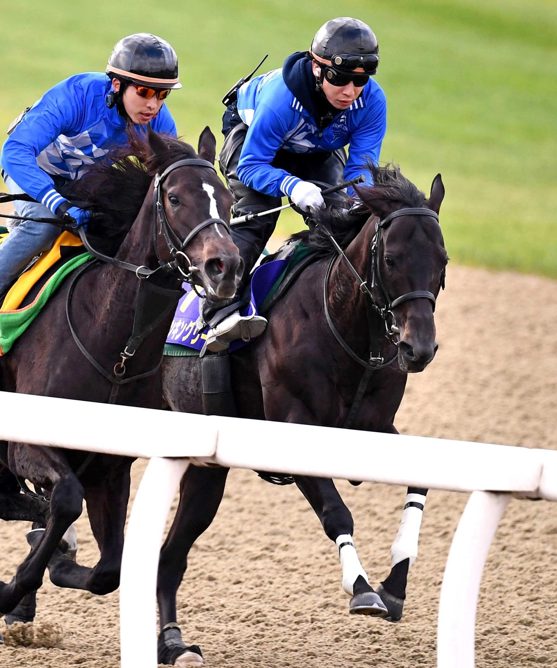 美浦Pで迫力満点の併せ馬を行ったダノンキングリー(右)
