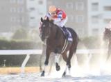 【名古屋・東海菊花賞】グレイトパールが人気に応えて差し切りV/地方競馬レース結果