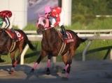【園田・楠賞】リンゾウチャネルが単勝元返しの支持に応えて完勝/地方競馬レース結果