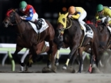 【大井・シンデレラマイルTR】サンルイビルがハナ差の接戦を制す/地方競馬レース結果