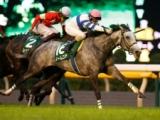 【次走】ノームコアは香港マイルへ 鞍上は引き続きルメール騎手