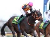 【チャンピオンズC】登録馬 ゴールドドリーム、インティなど20頭