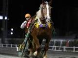 【ばんえい・クインC】ミスタカシマが一騎打ちを制しV 重賞6勝目/地方競馬レース結果