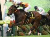 【京阪杯】アウィルアウェイ 地力強化を感じさせる調教/有力馬1週前調教リポート