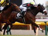 【ジャパンC】今年は混戦模様、あの馬の戴冠を期待/JRAレース展望
