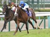 【次走】アドマイヤマーズの香港マイル鞍上はスミヨン騎手に