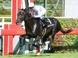 【京都2歳S】前走圧勝のマイラプソディは武豊騎手、ロールオブサンダーは松山弘平騎手/JRA重賞想定騎手