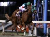 【川崎・ローレル賞】ブロンディーヴァが押し切りV 内田厩舎ワンツースリー/地方競馬レース結果