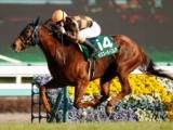 【京阪杯】モズスーパーフレアら牝馬に人気集中/JRA重賞予想オッズ