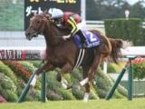 【香港ヴァーズ】選出馬 エグザルタント、ラッキーライラックなど14頭