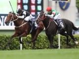 【香港ヴァーズ】昨年覇者エグザルタントが中心 日本の牝馬2頭も高評価
