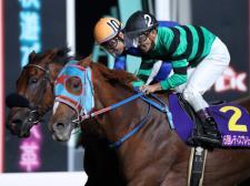 【クイーン賞まであと2日】牝馬ダート戦線の勢力図と過去傾向から浮上馬を読む!