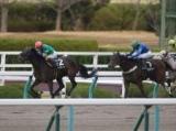 【堺S】(阪神) ビルジキールが2馬身突き抜けてOP入り