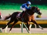 【朝日杯FS】登録馬 タイセイビジョン、レッドベルジュールなど17頭