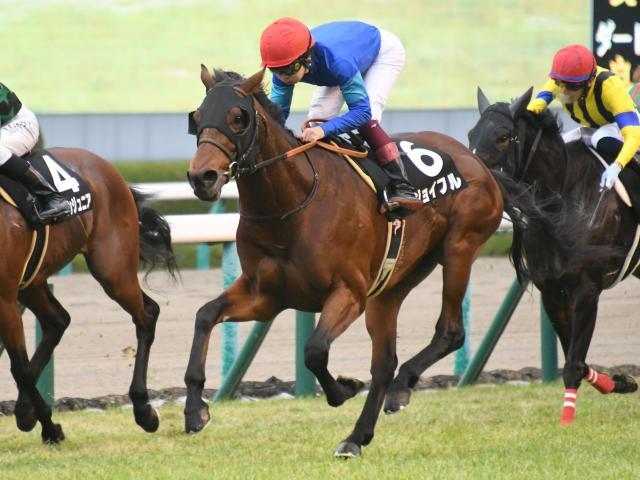 川又賢治騎手騎乗のジョイフルが差し切り勝ち