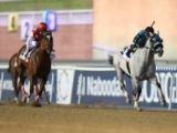 【海外競馬】ドバイGS優勝馬エックスワイジェットが心臓発作で死亡、8歳 昨年マテラスカイを振り切って悲願のV
