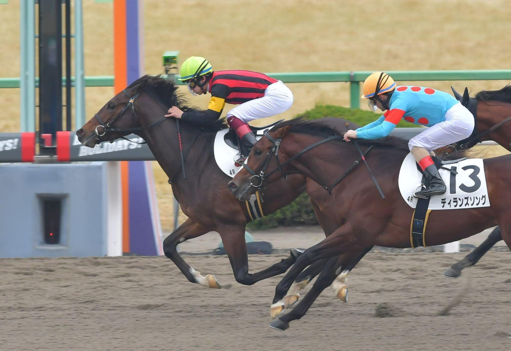 新馬戦を快勝したエイシンシャンツェ(左)=京都競馬場(撮影・石湯恒介)