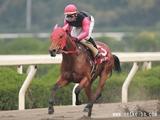 【地方競馬】姫路競馬再開初日の出馬表が確定、176戦ぶりの姫路出走馬も