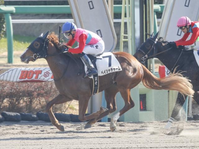 山田敬士騎手騎乗のペイシャチャームが新馬勝ち(c)netkeiba.com、撮影:下野雄規