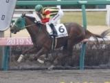 【大井・TCK女王盃】JRAマドラスチェックの騎乗予定騎手が森泰斗騎手に/選定馬情報更新