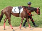 【地方競馬】7年半ぶり姫路競馬再開、松木大地騎手騎乗ヒデノレガシーが開幕戦制す