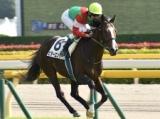 【京成杯】スタミナが要求される3歳重賞、あの馬に注目したい/JRAレース展望