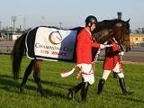 【海外競馬】サウジCの登録馬発表 日本馬はクリソベリル、ゴールドドリーム、ディアドラなど