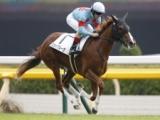 【京成杯】新馬戦圧勝の良血スカイグルーヴが人気の中心/JRA重賞予想オッズ