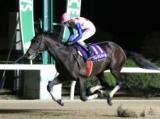 【佐賀記念】JRA重賞勝ち馬のグレイトパールなど/出走予定馬発表