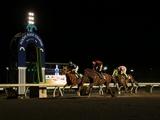 姫路競馬の復活、高知ファイナルレース、そして来週は今年初の交流GI川崎記念! 冬こそ地方競馬がアツイ!
