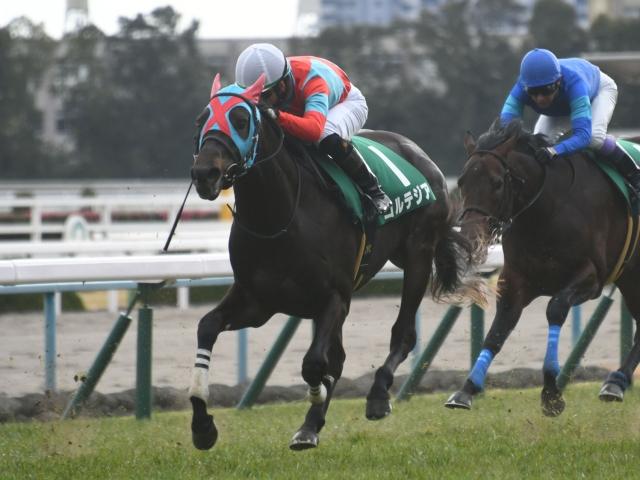 松山弘平騎手騎乗の7番人気コルテジアが勝利