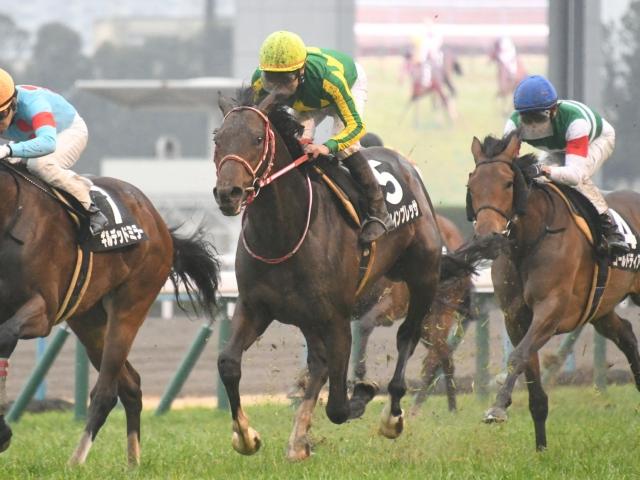 川島信二騎手騎乗の2番人気サトノインプレッサが勝利(c)netkeiba.com