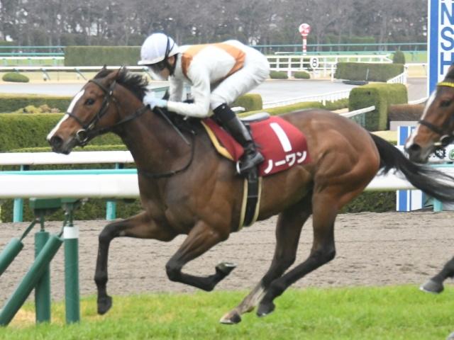 京都牝馬Sに出走予定のノーワン