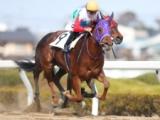 【地方競馬】ミシェル騎手騎乗のトゥーナノクターンが人気に応えてV 「馬とのコンタクトがよく取れました」