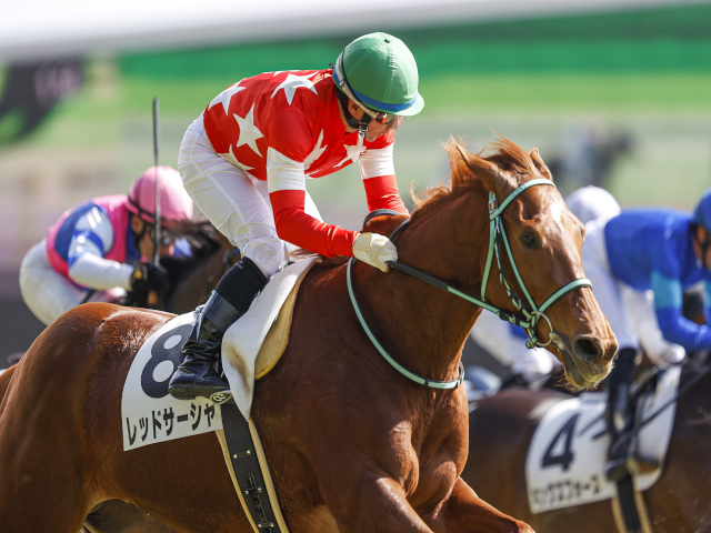 内田博幸騎手騎乗のレッドサーシャが勝利(c)netkeiba.com、撮影:下野雄規