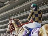 【海外競馬】ドンカスターマイルのハンデ発表、モズアスコットは57kg