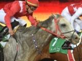 【サウジアC】地元のニューヨークセントラルがマテラスカイをゴール寸前で差し切る/海外競馬レース結果