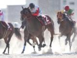 【LVR名古屋・第1戦】ミシェル騎手が5番人気メモリーディディで勝利!/地方競馬レース結果