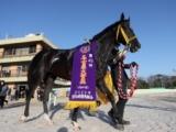 【名古屋大賞典】ロードゴラッソ&川田将雅騎手がV 「いい走りができたと思います」