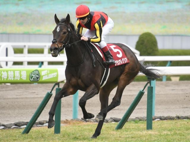 グランアレグリアは初めて、ルメール騎手以外の騎手が騎乗(写真は2019年阪神C優勝時)