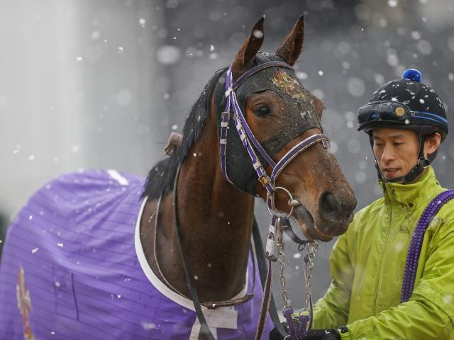風雪吹き荒れる中山牝馬Sを制したフェアリーポルカ(撮影:下野雄規)