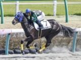 北村宏司騎手、JRA通算15000回騎乗達成