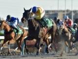 【東京スプリント】(大井) JRA所属の出走予定馬および補欠馬について