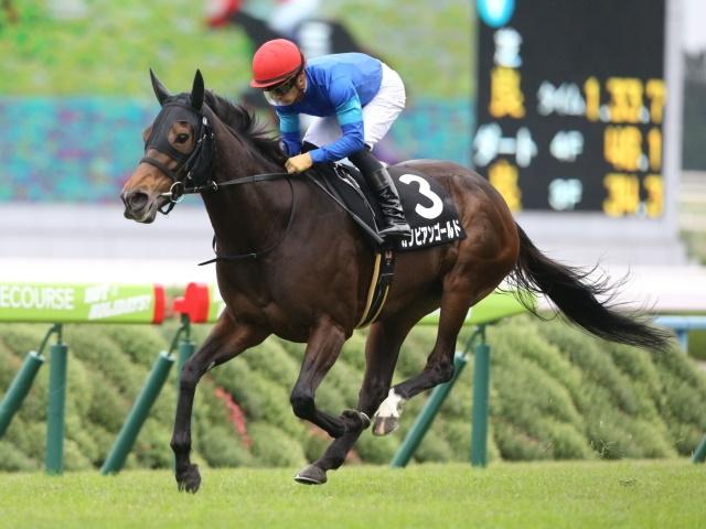 【福島牝馬Sゴールデンコンビ】人気薄での好走例多数。「鮫島一歩厩舎×秋山真一郎騎手」のカリビアンゴールド