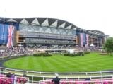 【海外競馬】イギリス競馬、6月1日からの競馬再開が目標