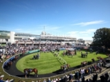 【海外競馬】アイルランド競馬は6月8日から無観客で再開予定